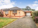 Thumbnail to rent in Plas Ffynnon Way, Oswestry