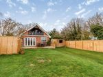 Thumbnail for sale in Ridgewell, Halstead, Essex