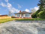 Thumbnail to rent in Hollym Road, Patrington, Hull