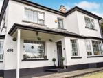 Thumbnail to rent in Saintfield Road, Carryduff