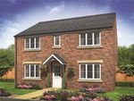 "Thumbnail to rent in ""The Hadleigh"" at Hadham Grove, Hadham Road, Bishop's Stortford"