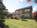 Thumbnail for sale in Eastern Way, Darras Hall, Newcastle Upon Tyne, Northumberland