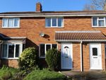 Thumbnail to rent in Whitelass Close, Thirsk