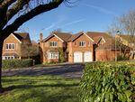 Thumbnail for sale in Dyer Road, Wokingham