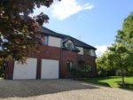 Thumbnail for sale in Morelands Grove, Gloucester, Gloucester