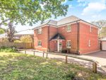 Thumbnail to rent in Glen Road, Swanwick, Southampton