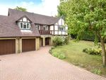 Thumbnail for sale in Blackwater, Camberley