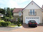 Thumbnail to rent in Balglass Drive, Balfron, Stirlingshire