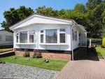Thumbnail for sale in Gladelands Park, Ringwood Road, Ferndown, Dorset