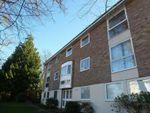 Thumbnail to rent in The Park, Leckhampton, Cheltenham