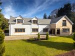 Thumbnail for sale in Park Drive, Thorntonhall, Glasgow