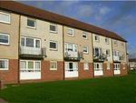 Thumbnail to rent in Fairholm Street, Larkhall ML9,