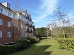 Thumbnail to rent in Park View Close, St Albans