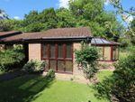 Thumbnail to rent in Forest Walk, Elmbridge Village, Cranleigh