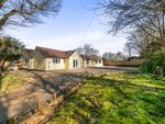 Thumbnail for sale in Beacon Road, Ditchling, Hassocks