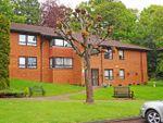 Thumbnail to rent in Glenside Court, Tygwyn Road, Penylan, Cardiff