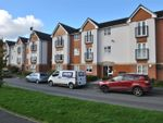 Thumbnail to rent in Clearwater Quays, Latchford, Warrington