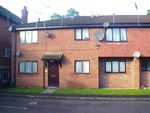 Thumbnail to rent in Petersfield Road, Whitehill, Bordon