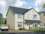 Thumbnail to rent in Alloa Park Drive Off Clackmannan Road, Alloa, Clackmannanshire