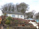 Thumbnail for sale in Bonnyton Drive, Eaglesham, East Renfrewshire