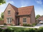"Thumbnail to rent in ""Melbourne"" at Chalton Lane, Clanfield, Waterlooville"