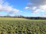 Thumbnail for sale in Chapmore End, Near Hertford