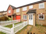 Thumbnail for sale in Titus Way, Colchester, Essex