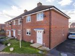 Thumbnail to rent in Goldring Avenue, Hellingly, Hailsham