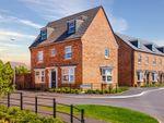 "Thumbnail to rent in ""Hertford"" at Blandford Way, Market Drayton"