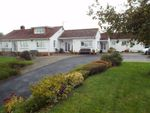 Thumbnail for sale in Taunton Road, Pedwell, Bridgwater, Somerset