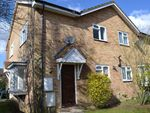 Thumbnail to rent in Longstock Close, Chineham