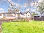 Thumbnail for sale in Armour Hill, Tilehurst, Reading, Berkshire