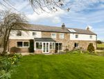 Thumbnail for sale in Low Farm, Birtley, Hexham, Northumberland