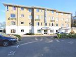 Thumbnail to rent in Amelia House, Strand Drive, Richmond, London
