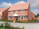 "Thumbnail for sale in ""Alnmouth"" at Livingstone Road, Corby"