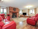 Thumbnail for sale in Gannetts, Todber, Sturminster Newton, Dorset