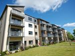 Thumbnail to rent in Hammerman Avenue, The Campus, Hilton, Aberdeen