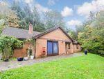 Thumbnail to rent in Coed Hafod, Six Bells, Abertillery