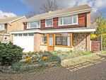 Thumbnail for sale in Quernmore Close, Bromley