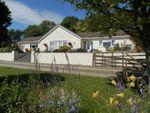 Thumbnail for sale in Llwyndafydd, Llandysul