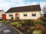 Thumbnail for sale in Beaufield Gardens, Kilmaurs