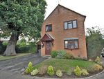 Thumbnail for sale in Lily Close, Springfield, Chelmsford