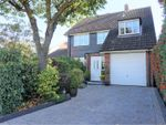 Thumbnail to rent in Longfield Road, Ipswich