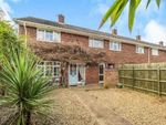 Thumbnail to rent in Northfields, Norwich