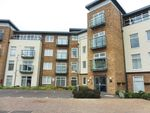 Thumbnail to rent in Red Admiral Court, Little Paxton, St. Neots