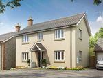 Thumbnail to rent in Honiton Road, Churchinford, Taunton