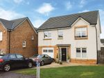 Thumbnail to rent in Taylor Court, Denny, Falkirk