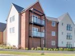 Thumbnail for sale in Pipit Court, Colchester