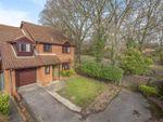 Thumbnail for sale in Whitebeam Close, Wokingham, Berkshire