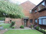 Thumbnail to rent in Prunus Close, Ferndown